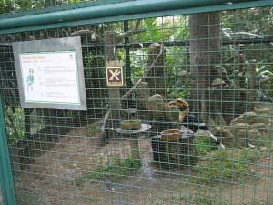 birdpark7