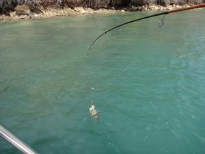 fishing_09
