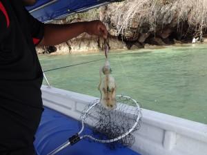 fishing_10