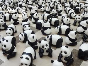 panda_13